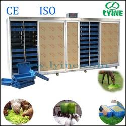 lyine hydroponic plant nutrients/barley hydroponics