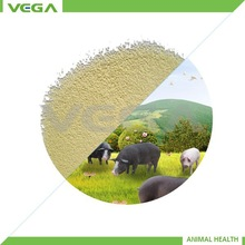 Vitamin A 1000 Powder High Quality Vitamin A 1000 Top Vitamin A 1000 Product Alibaba China Market