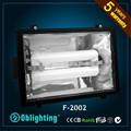 Al aire libre 120w~250w de iluminación de ahorro de energía de inducción de inundación de luz para el estadio de fútbol