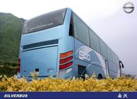 Silver Bus 11M BUS 12M bus for sale