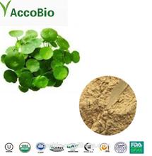 GMP Supplier High Quality Gotu Kola Extract Powder Total Triterpenes 40%-95%