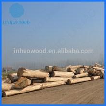 Factory Price Paulownia Wood Logs