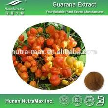 Guarana Extract,Guarana Seed Extract,Guarana Powder