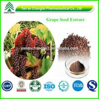 GMP Factory Natural 95% OPC Grape Seed Extract P.E.