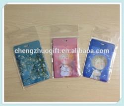 PVC Double Pockets Plastic Business Cardholder