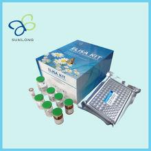 Porcine interleukin 2, IL-2 ELISA Kit