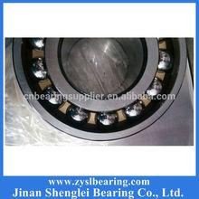 Premium Bearing 20x42x8 Plastic retainer ball bearing 16004 zz