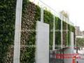 sjh012238 artificial de plástico natureza parede verde falso planta de parede