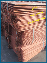 fruits import and export companies/99.99% pure copper cathode/import and export company