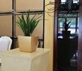 Produto novo vaso grande/plástico decorativo vaso de plantas