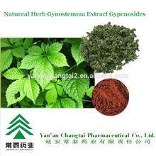 Hot Sale GMP Certificate 100% Pure Natural Fiveleaf Gynostemma Herb