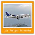 Ddu transporte aéreo para dubai-- skype: lisacologistics
