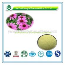 GMP Factory Supply Organic Echinacea Purpurea Extract