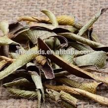 dried leaf aloe price list of aloe vera