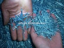 "hot sale 2"" galvanized iron nail & common nail factory"