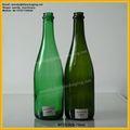farbige große Champagner glasflaschen