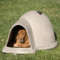 custom vacuum thermoforming dog houses