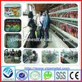 Tavuk çiftliği tedarikçi/tavuk çiftlik isimleri( üretici)