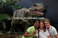SXY Dinoworld Real Dinosaur Museum Display Animatronic Dinosaur T-Rex