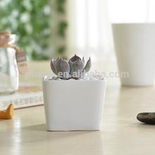Unique mini white square ceramic garden planter