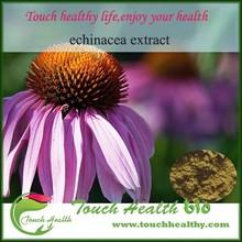 Touchhealthy supply GMP Organic Echinacea Extract/Echinacea Purpurea Extract/Polyphenols 4%/Chicoric Acid 10:1