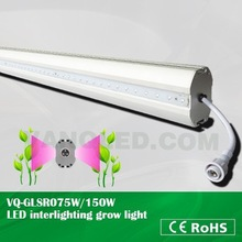 Shenzhen VANQ LED grow lights!!! for tomatos & cucumber plants, 660nm 460nm 75w high power green led plant supplemental lamp