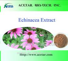 100% Natural Echinacea Purpurea Extract ,2%, Cichoric acid(HPLC)