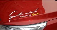 Custom PVC PE car body/window decal sticker