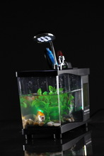 Special hot sell fish tank buy