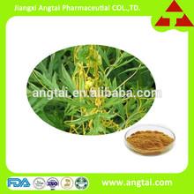 100% natural Semen Cuscutae Extract/Dodder Seed P.E.