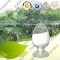 Suministro directo de fábrica 100% Natural Serenoa repens extracto -- palma enana americana P.E
