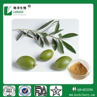 Health product material ehancing immunity Olive tree leaf extract powder dietary supplement powder Oleuropein 10% 20% 40%