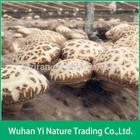 Names of Edible Mushrooms,Dried Flower Mushroom