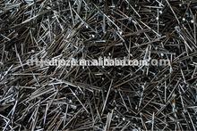 Polished Galvanized Iron Common Nail