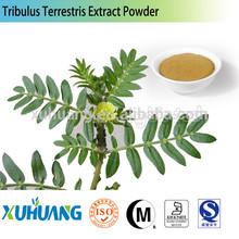 Saponins/fructus tribulus terrestris p.e/tribulus terrestris extract