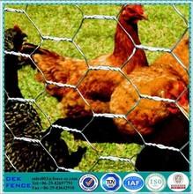 Chicken wire dog fence / chicken wire net pool fence