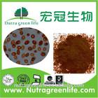 Professional manufacture supply 20% beta-carotene powder--Dunaliella salina extract