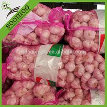 good farmer garlic price for indian