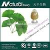 EU market hot selling tranditional Chinese herbs extract gingko biloba 24%/6%