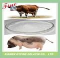 protein hidrolisat sığır için kanatlı domuz tipi yem yemek