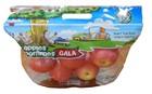 Stand-up fresh fruit bag with handle/laminated ziplock apple bag