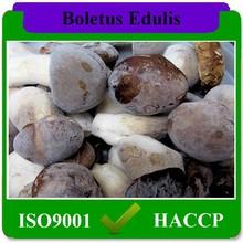 Китайский гриб экспортер замороженные боровик маракуйя