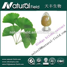 With 12 years experience Bulking price dried ginkgo biloba leaves extract powder