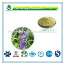 Hot Sale GMP Certificate 100% Pure Natural Baicalin