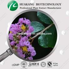 ISO/GMP factory supplyISO/GMP factory supply banaba leaf Extract powderCorosolic acid 1%-98% CADY