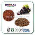 2015 Hot venda a granel extrato de semente de uva Podwer / óleo / cápsula / Tablet para venda