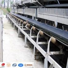 Jinrui efficient DTII type belt conveyor