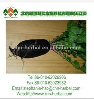 100% natural black radish root extract