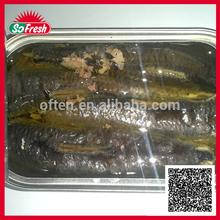 Sardinha peixe nome científico com qualidade superior