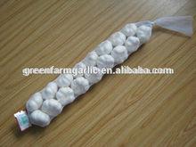 braid garlic in 10kg/9kg/5kg carton export